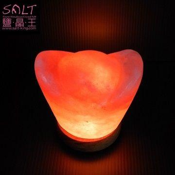 為慶祝*鹽燈專家-鹽晶王(香港)*開業一週年,優惠推廣【第三擊】